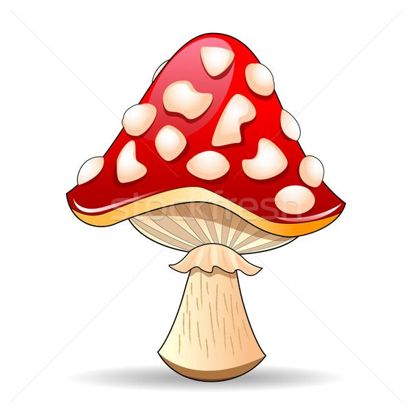 Mushroom Stock photo © liolle