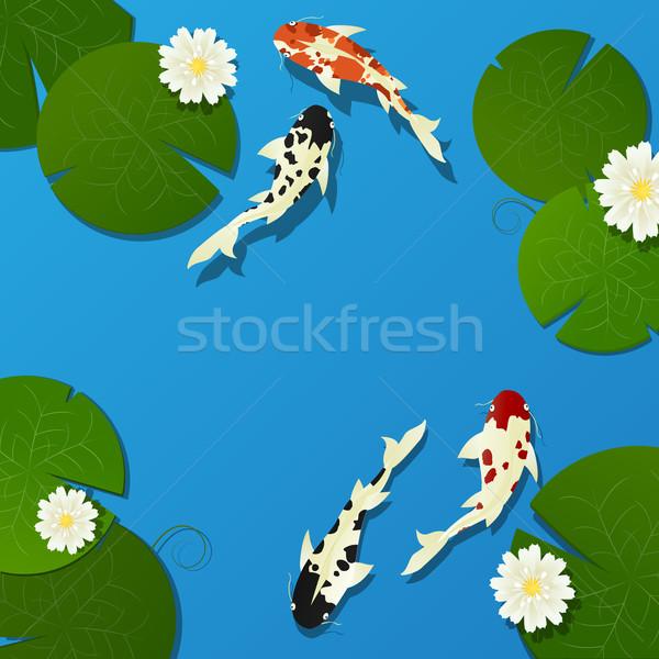Koi vis lotus bladeren bloem natuur Stockfoto © lirch