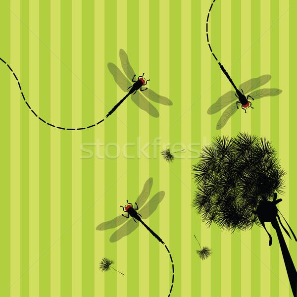 Paardebloem libel illustratie voorjaar leven hoofd Stockfoto © lirch