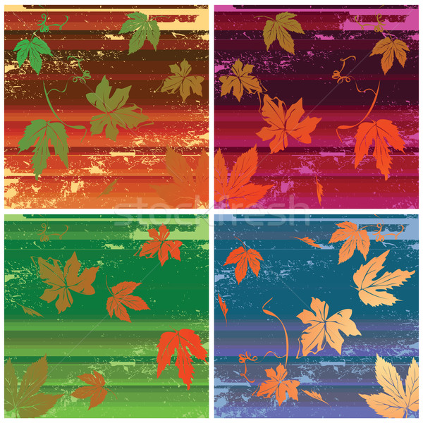stripes and leaves Stock photo © lirch