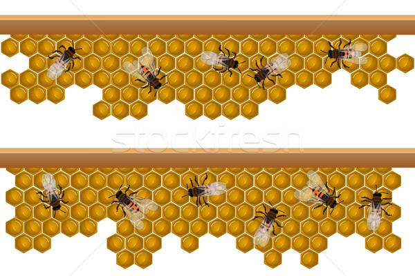 Arı kovan model dizayn elemanları Stok fotoğraf © lirch