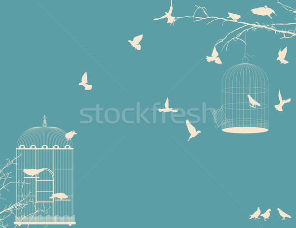 Birds and birdcages vintage background Stock photo © lirch