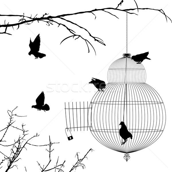 Abierto jaula aves siluetas blanco grupo Foto stock © lirch