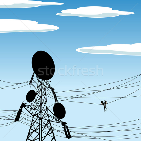 Birds on wire background Stock photo © lirch