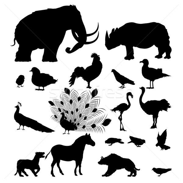 Wild animal silhouettes Stock photo © lirch
