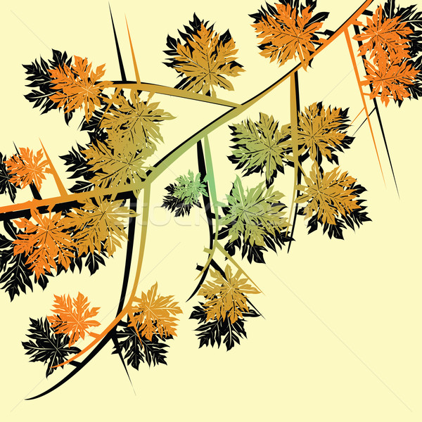 Autumn foliage Stock photo © lirch