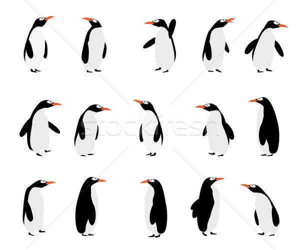 Aranyos rajz madarak állatok vicces hátterek Stock fotó © lirch