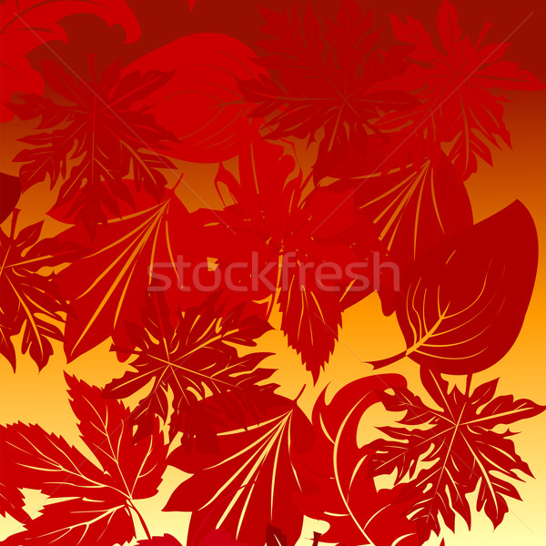 Leaves background Stock photo © lirch