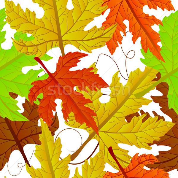Autumn leaves seamless Stock photo © lirch