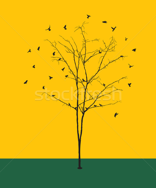 Bladerloos boom vogels silhouetten grafische illustratie Stockfoto © lirch
