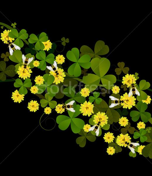 甘い クローバー 黄色 黒 花 緑 ストックフォト © lirch