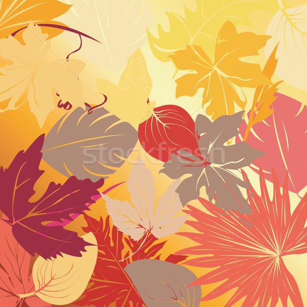 紅葉 ベクトル 芸術 実例 テクスチャ ツリー ストックフォト © lirch