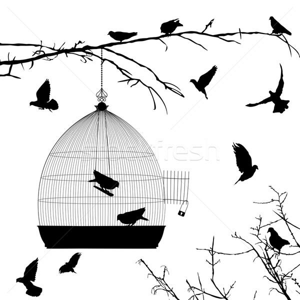 Ptaków sylwetki biały grupy czarny Zdjęcia stock © lirch