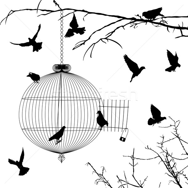 Cage and birds silhouettes Stock photo © lirch