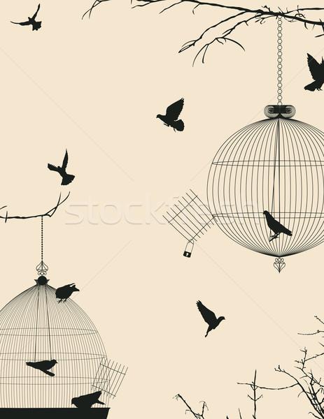 Aves cartão postal projeto céu grupo preto Foto stock © lirch