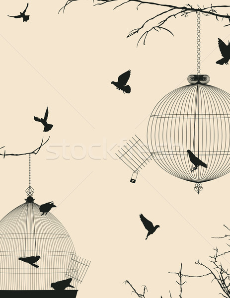 Foto stock: Aves · cartão · postal · projeto · céu · grupo · preto