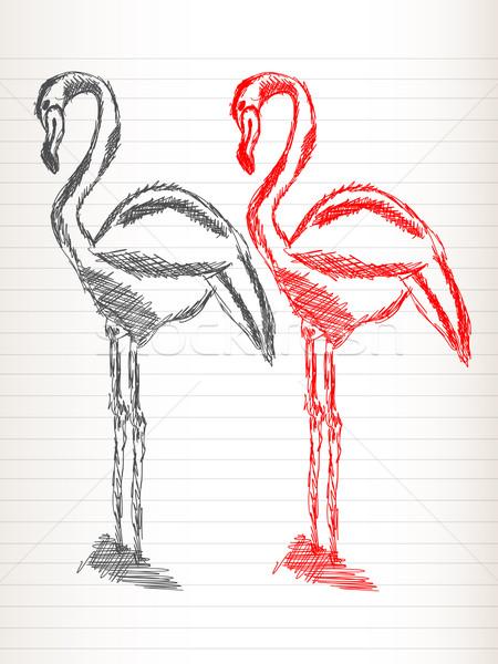 Flamingo sketch Stock photo © lirch