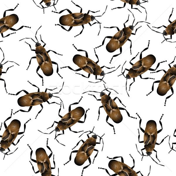 Naturaleza grupo blanco insectos antena Foto stock © lirch