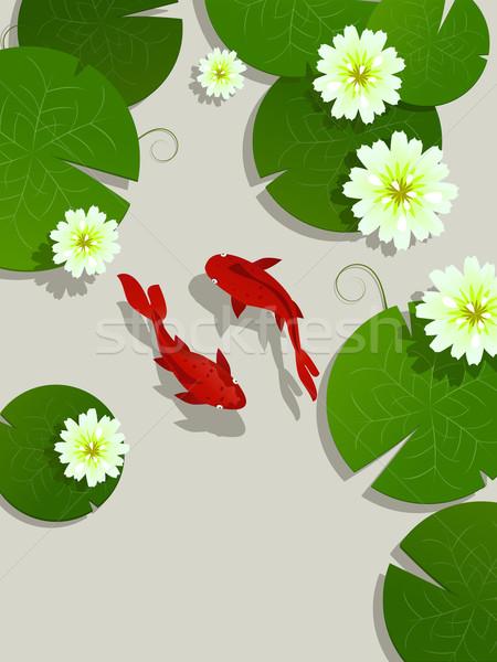ニシキゴイ 魚 カード 蓮 葉 花 ストックフォト © lirch