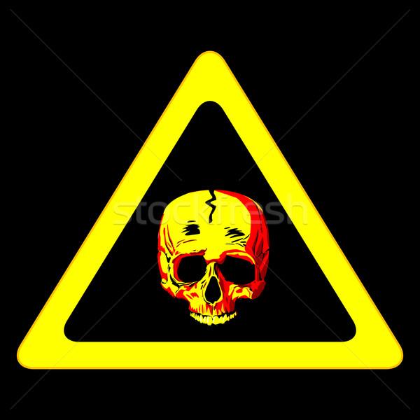 знак опасности человека череп черный компьютер Сток-фото © lirch