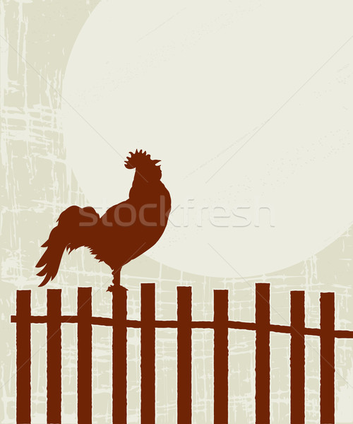 Retro rooster card Stock photo © lirch