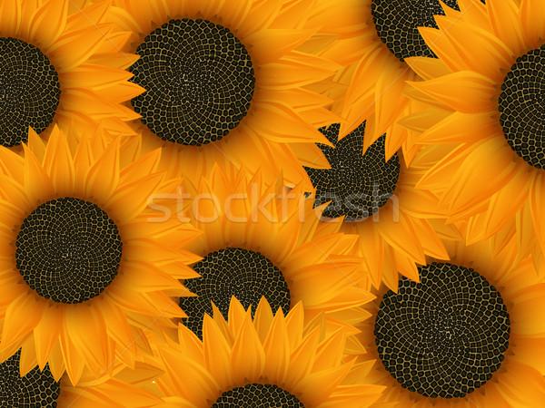 Summer background  Stock photo © lirch