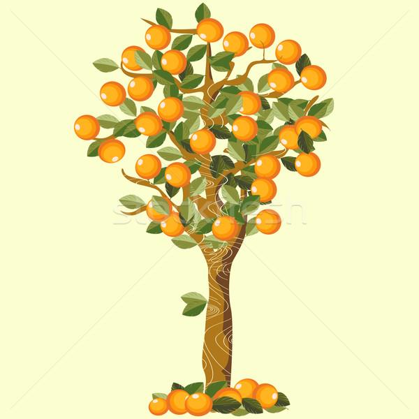 Narancsfa fa gyümölcs művészet ősz rajz Stock fotó © lirch