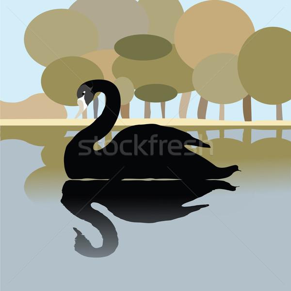 Nero Swan lago romantica illustrazione natura Foto d'archivio © lirch