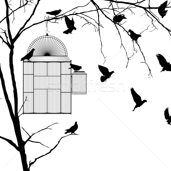 Gaiola silhuetas silhueta branco grupo preto Foto stock © lirch