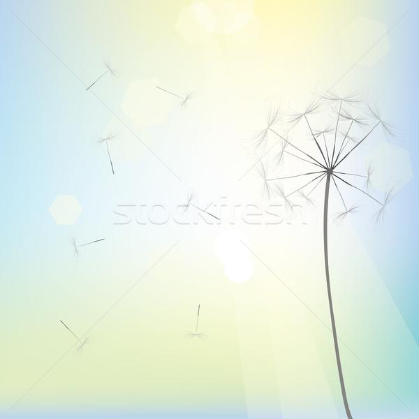 Parlak karahindiba dizayn vektör sanat gökyüzü Stok fotoğraf © lirch