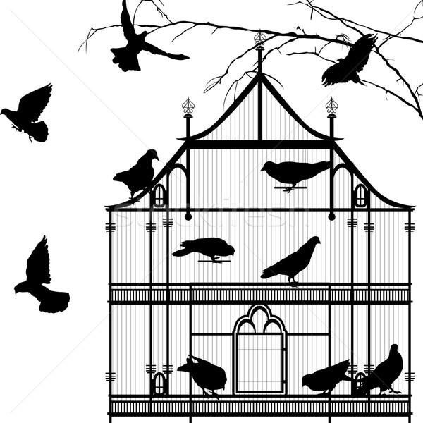 Vögel Vogelkäfig Grafik Silhouetten weiß Gruppe Stock foto © lirch