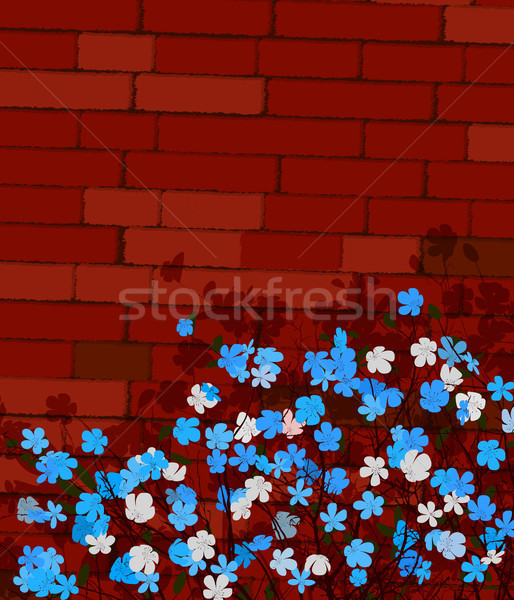 Blue flowers on a wall Stock photo © lirch
