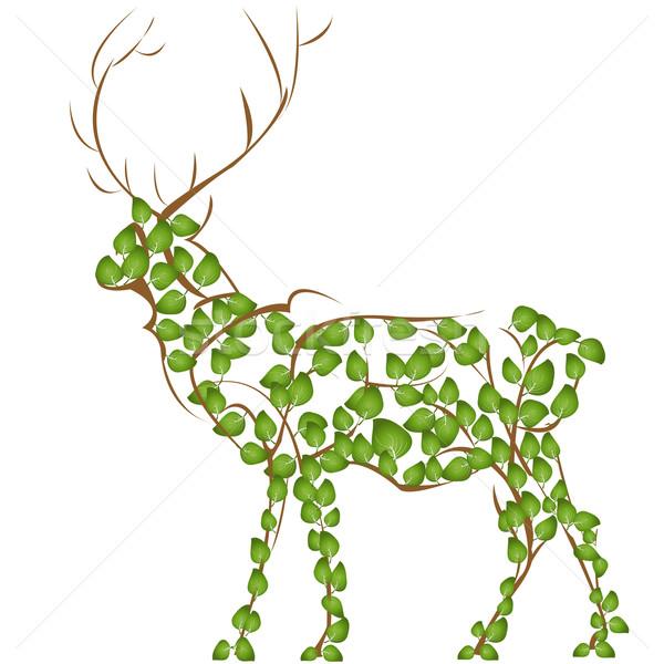 Deer Stock photo © lirch