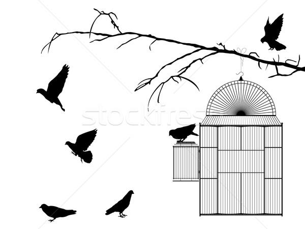 Gaiola silhueta branco grupo preto vintage Foto stock © lirch