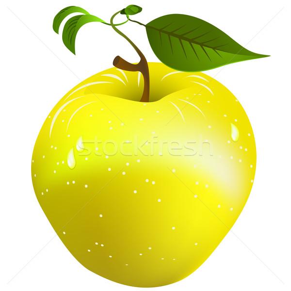 新鮮な リンゴ 画像 ジューシー 白 ストックフォト © lirch