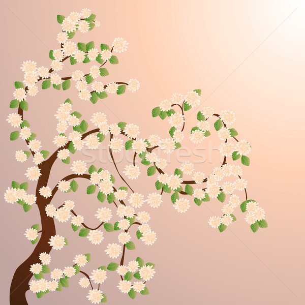 Blooming tree Stock photo © lirch