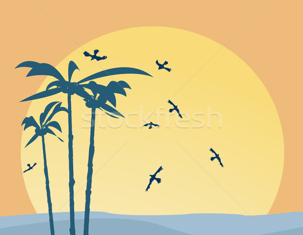 Palm trees Stock photo © lirch