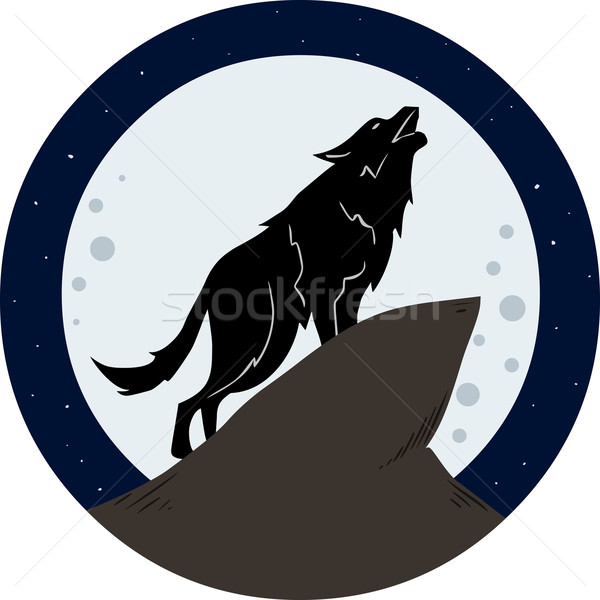 Wolf Howling To The Moon At Night Stock photo © LironPeer