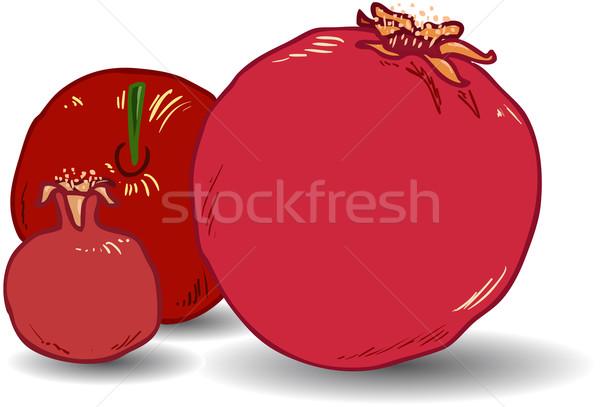 страница Новый год продовольствие красный цвета свежие Сток-фото © LironPeer