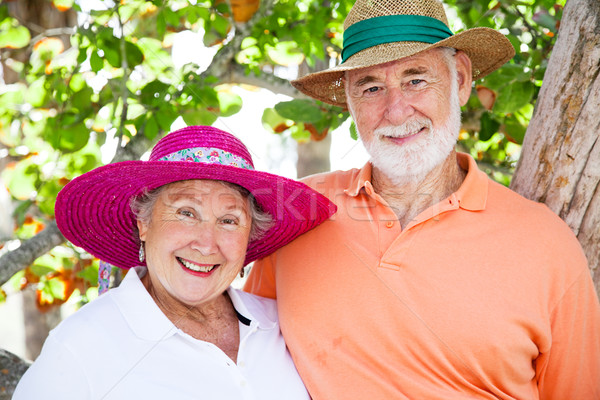 Sweet Senior Couple Stock photo © lisafx
