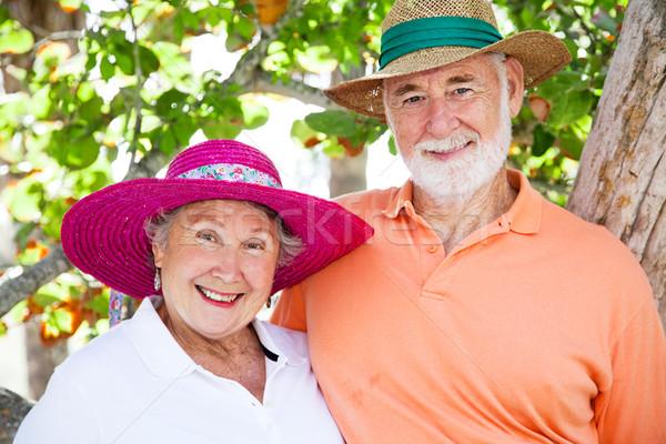 Dolce indossare sole vacanze Foto d'archivio © lisafx