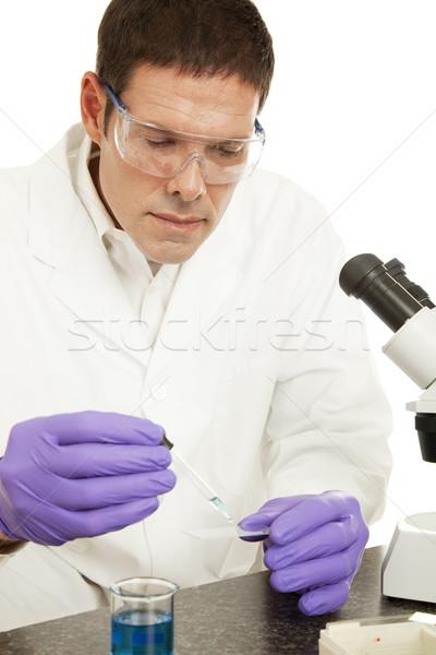 Scientific Research Stock photo © lisafx