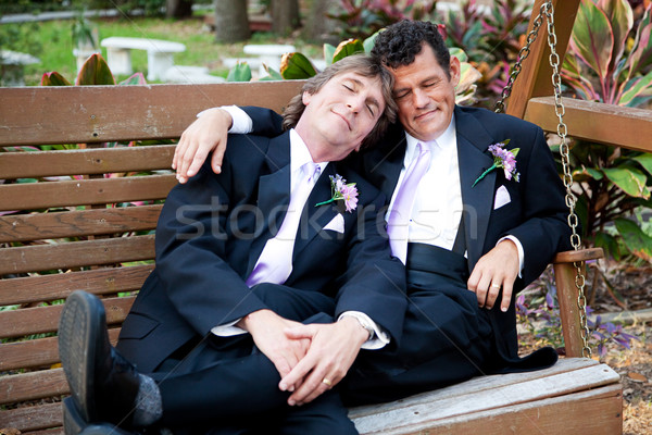 Post boda siesta gay Pareja swing Foto stock © lisafx