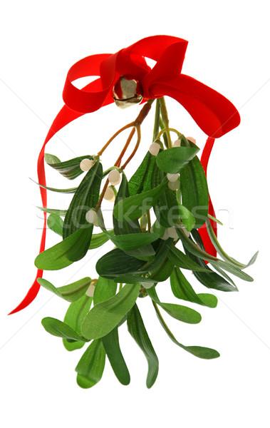 Christmas maretak geïsoleerd Rood boeg bel Stockfoto © lisafx
