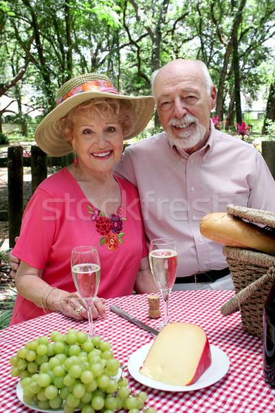 Klaar picknick aantrekkelijk genieten Stockfoto © lisafx