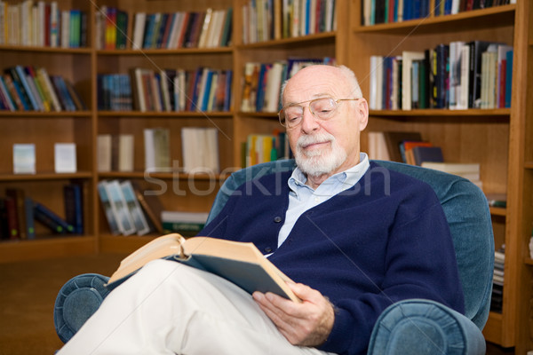 The Pleasure of Reading Stock photo © lisafx