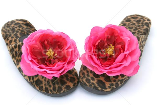 Slippers twee paar luipaard print Stockfoto © lisafx