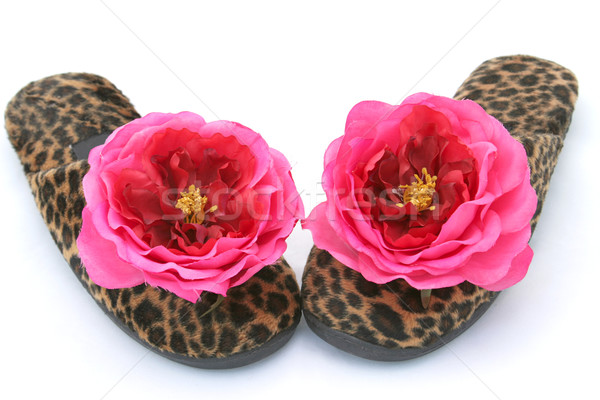 Glamorous Slippers Two Stock photo © lisafx