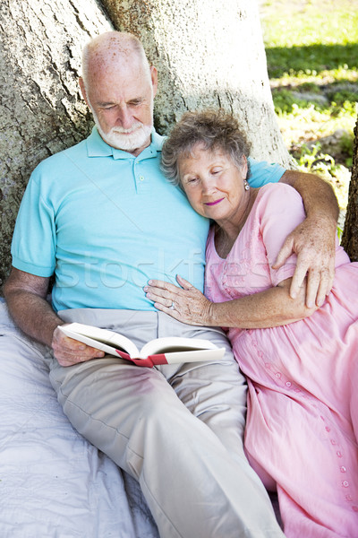 Senior Couple Reading Together Outdoors Stock photo © lisafx