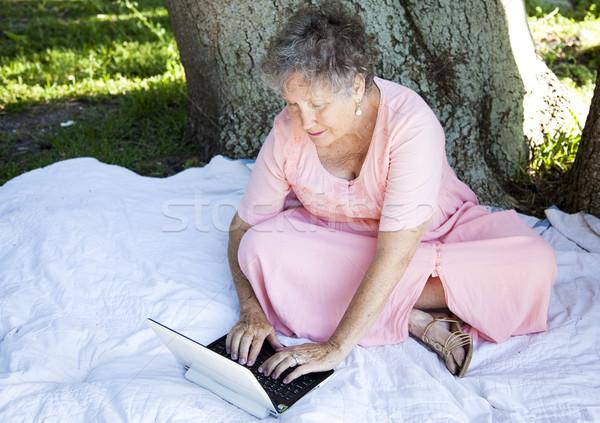 Idős nő laptopot használ netbook laptop számítógép kint Stock fotó © lisafx